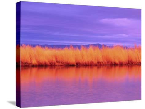 Sunset on Summer Lake-Robert Marien-Stretched Canvas Print