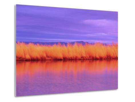 Sunset on Summer Lake-Robert Marien-Metal Print