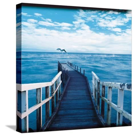 Pier and Dolphins-Colin Anderson-Stretched Canvas Print
