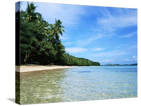 Tropical Coastline of Turtle Island-David Papazian-Stretched Canvas Print