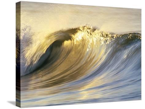 Ocean Wave Breaking-David Pu'u-Stretched Canvas Print