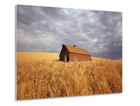 Old Barn Amidst Wheat Field-Craig Tuttle-Metal Print