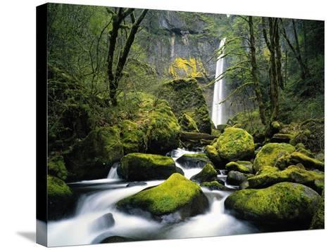 Stream Flowing over Mossy Rocks-Craig Tuttle-Stretched Canvas Print