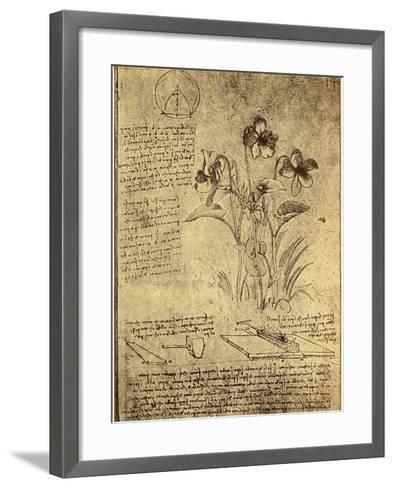 Drawing of Flowers and Diagrams by Leonardo da Vinci-Bettmann-Framed Art Print