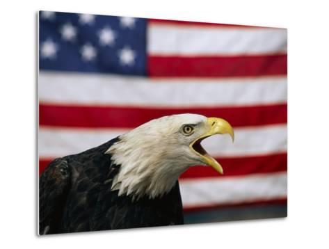 Bald Eagle and American Flag-W^ Perry Conway-Metal Print
