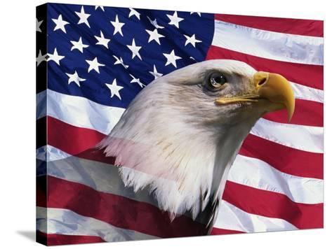 Bald Eagle and American Flag-Joseph Sohm-Stretched Canvas Print