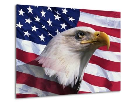 Bald Eagle and American Flag-Joseph Sohm-Metal Print