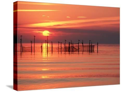 Silhouetted Fishing Net at Sunset-Lowell Georgia-Stretched Canvas Print