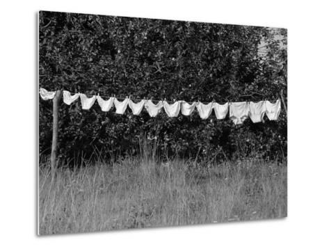 Underwear Hanging to Dry-Owen Franken-Metal Print