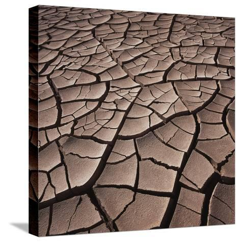 Deep Cracks in the Desert--Stretched Canvas Print
