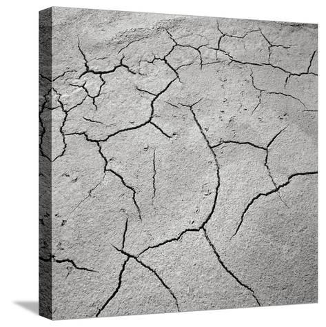 Cracked Desert Mud--Stretched Canvas Print
