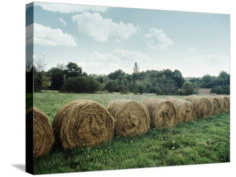 Bales of Hay in a Field--Stretched Canvas Print
