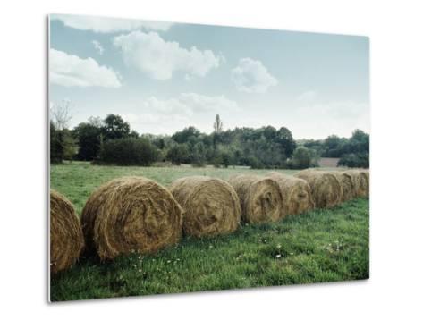 Bales of Hay in a Field--Metal Print