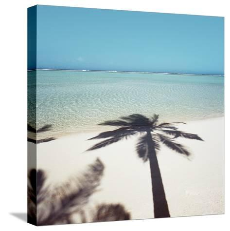 Shadow of Palm Tree on a Beach--Stretched Canvas Print