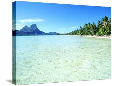 Tropical Waters--Stretched Canvas Print