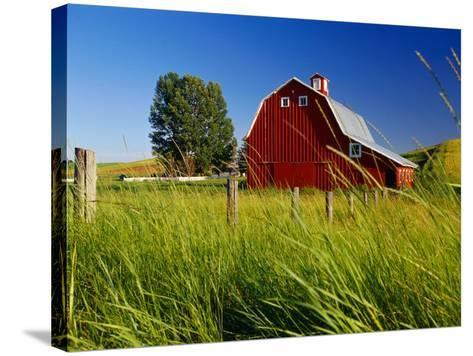 Red Barn in Long Grass-Bob Krist-Stretched Canvas Print