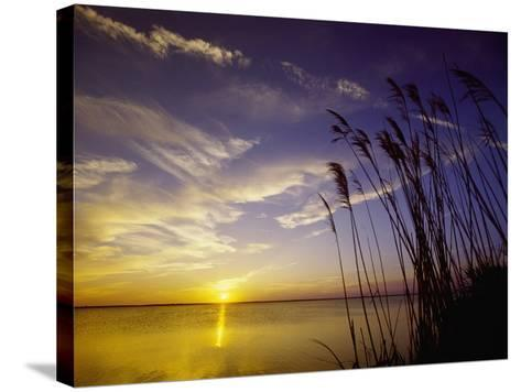 Sunset on the Barnegat Bay and Sea Oats-Bob Krist-Stretched Canvas Print