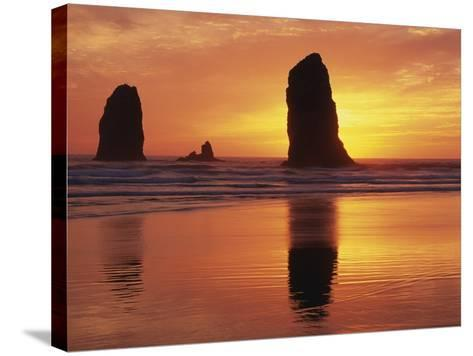 Sea Stacks at Cannon Beach-Darrell Gulin-Stretched Canvas Print