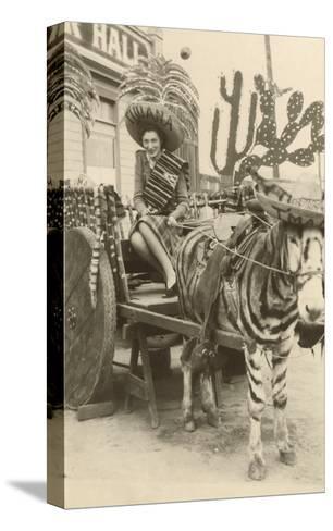 Woman in Zebra Cart, Tijuana, Mexico--Stretched Canvas Print