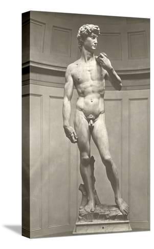 Michelangelo's David--Stretched Canvas Print