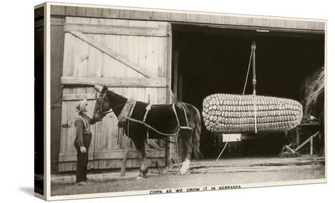 Giant Ear of Corn with Plow Horse, Nebraska--Stretched Canvas Print
