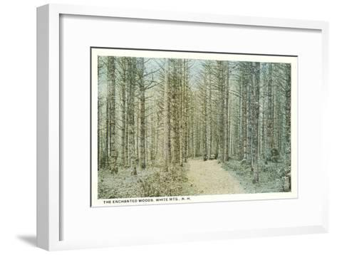 Enchanted Woods, White Mountains, New Hampshire--Framed Art Print
