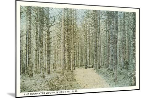 Enchanted Woods, White Mountains, New Hampshire--Mounted Art Print