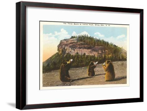Bears at Indian Head, White Mountains, New Hampshire--Framed Art Print