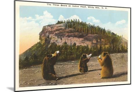 Bears at Indian Head, White Mountains, New Hampshire--Mounted Art Print