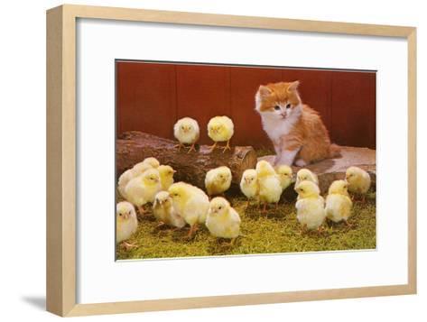 Kitten with Chicks--Framed Art Print