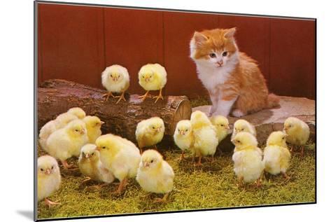 Kitten with Chicks--Mounted Art Print