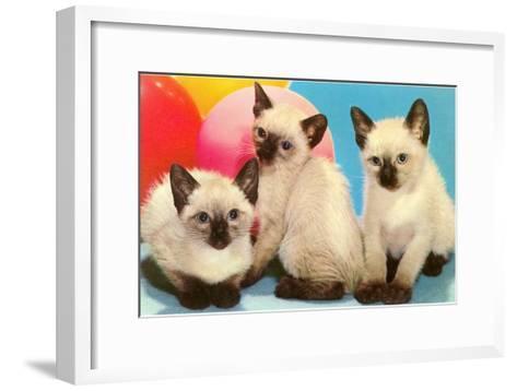 Three Siamese Kittens--Framed Art Print