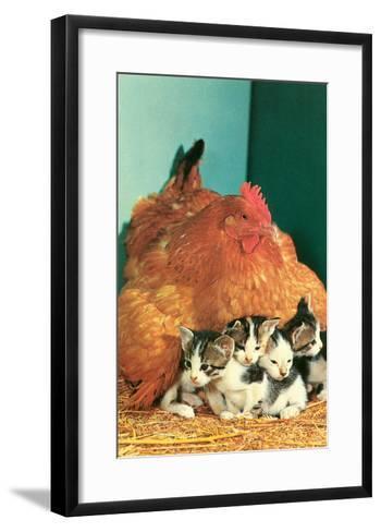 Hen Sitting on Kittens--Framed Art Print