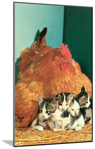 Hen Sitting on Kittens--Mounted Art Print
