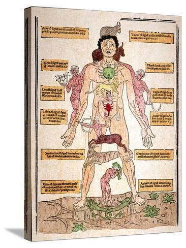Bloodletting Chart, 1493-Johannes De Ketham-Stretched Canvas Print