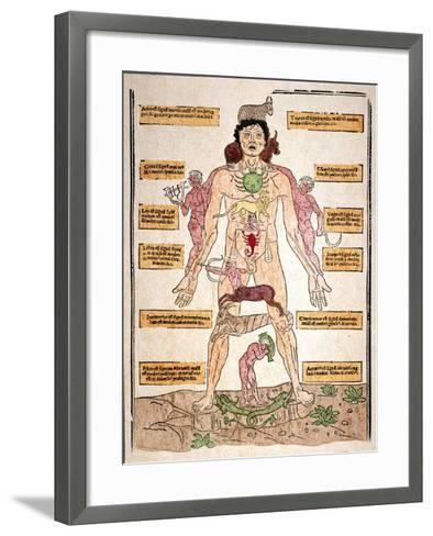 Bloodletting Chart, 1493-Johannes De Ketham-Framed Art Print
