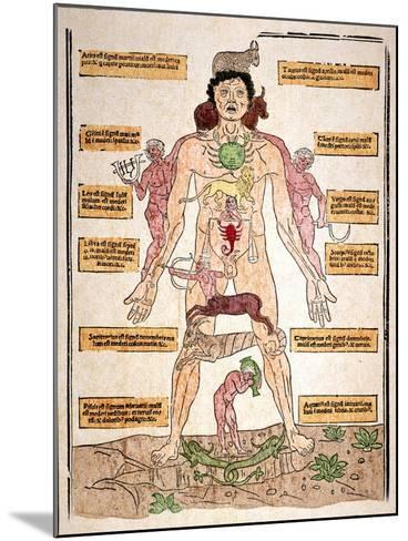 Bloodletting Chart, 1493-Johannes De Ketham-Mounted Giclee Print