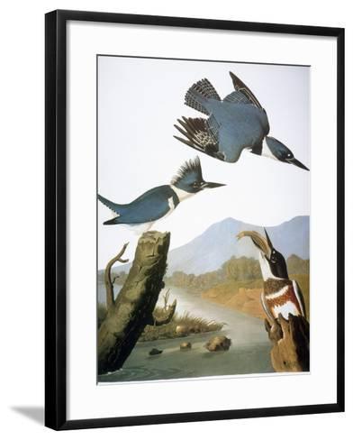 Audubon: Kingfisher, 1827-John James Audubon-Framed Art Print