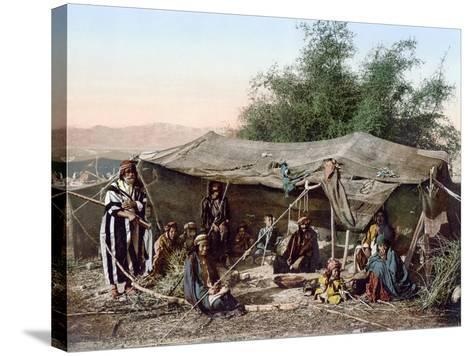 Holy Land: Bedouin Camp--Stretched Canvas Print