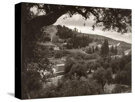 Mount Of Olives--Stretched Canvas Print
