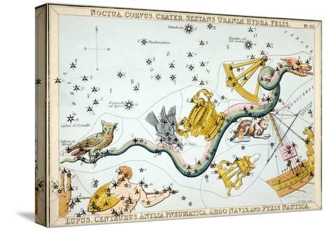 Constellation: Hydra-Sidney Hall-Stretched Canvas Print