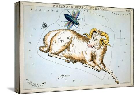 Constellation: Aries-Sidney Hall-Stretched Canvas Print