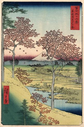 Japan: Maple Trees, 1858-Ando Hiroshige-Stretched Canvas Print