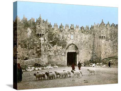 Jerusalem: Damascus Gate--Stretched Canvas Print