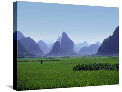Farmland with the Famous Limestone Mountains of Guilin, Guangxi Province, China-Charles Sleicher-Stretched Canvas Print