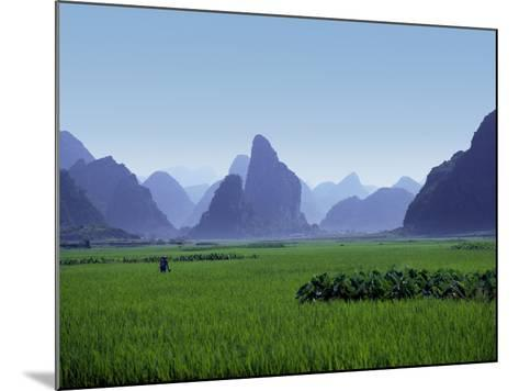 Farmland with the Famous Limestone Mountains of Guilin, Guangxi Province, China-Charles Sleicher-Mounted Photographic Print