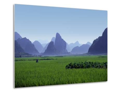 Farmland with the Famous Limestone Mountains of Guilin, Guangxi Province, China-Charles Sleicher-Metal Print