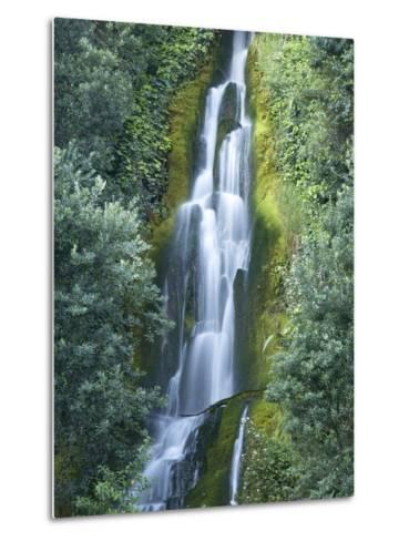 Waterfall, Centennial Gardens, Napier, Hawkes Bay, North Island, New Zealand-David Wall-Metal Print