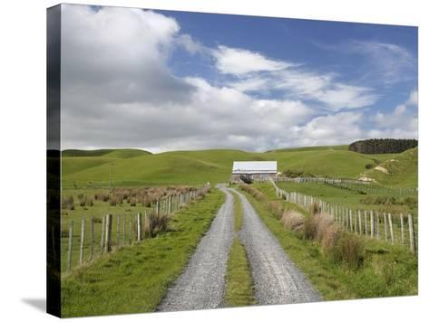 Track and Farm Building, Near Lake Ferry, Wairarapa, North Island, New Zealand-David Wall-Stretched Canvas Print