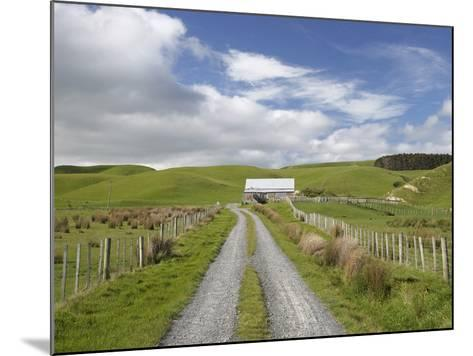 Track and Farm Building, Near Lake Ferry, Wairarapa, North Island, New Zealand-David Wall-Mounted Photographic Print